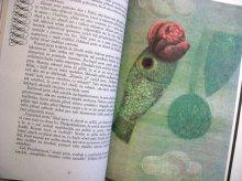 他の写真2: Jan Kudlacek:絵 Antoine Francois Prevost:著 / Manon Lescautova <チェコ絵本>
