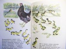 他の写真1: 動物の物語 (サムイル・マルシャーク物語集) / ウラジーミル・レーベジェフ:絵