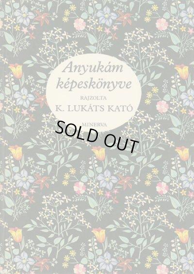 画像1: ルカーチ・カトー K. Lukats Kato:絵 / Anyukam kepeskonyve