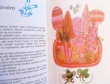 他の写真1: ヨゼフ・パレチェク Josef Palecek:絵 Zdenek Adla:著 / Kouzelnikova zahrada <チェコ絵本>