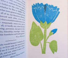 他の写真1: エリック・カール Eric Carle:絵 Louise Bachelder:編 / Nature Thoughts A Selection